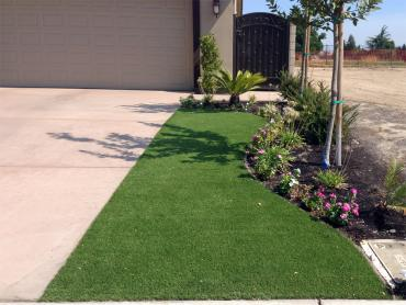 Artificial Grass Photos: Synthetic Grass Cost Nutrioso, Arizona Lawns, Front Yard Landscaping