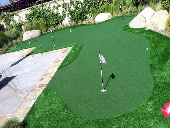 Artificial Grass Photos: Synthetic Grass Golden Valley, Arizona Putting Greens, Beautiful Backyards