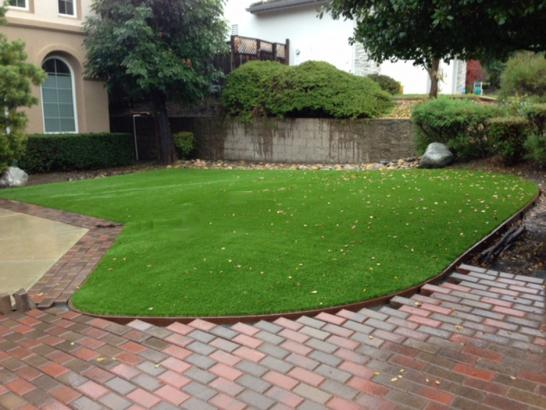 Artificial Grass Photos: Synthetic Grass Sonoita, Arizona Lawn And Garden, Small Front Yard Landscaping