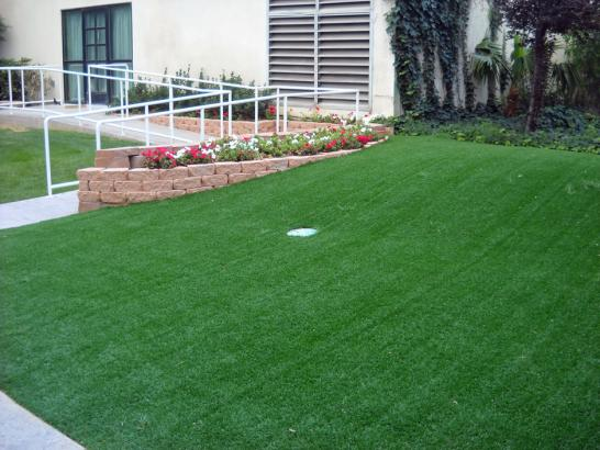 Artificial Grass Photos: Synthetic Grass Valle, Arizona Putting Green Flags, Front Yard Landscape Ideas