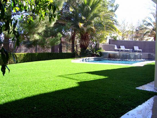 Artificial Grass Photos: Synthetic Grass White Mountain Lake, Arizona Rooftop, Backyard Garden Ideas
