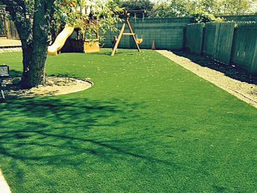 Synthetic Lawn Duncan, Arizona Landscape Photos, Backyard artificial grass