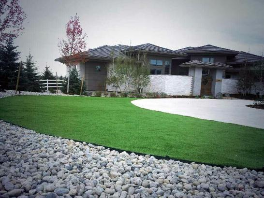 Artificial Grass Photos: Synthetic Lawn Guadalupe, Arizona Landscaping, Small Front Yard Landscaping