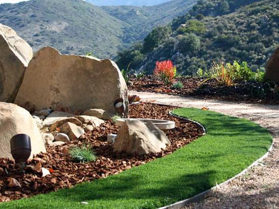 Artificial Grass Photos: Synthetic Lawn Santa Cruz, Arizona Home And Garden, Front Yard Design