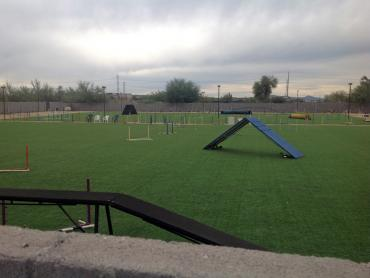 Artificial Grass Photos: Synthetic Lawn Toyei, Arizona Eco Friendly Products, Recreational Areas