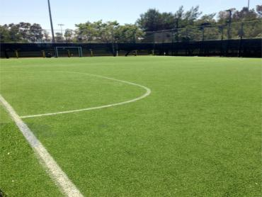 Artificial Grass Photos: Synthetic Turf Cornville, Arizona Sports Turf