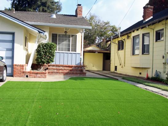 Artificial Grass Photos: Synthetic Turf Supplier Beyerville, Arizona Lawn And Landscape, Front Yard Design