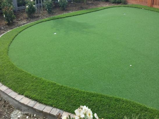 Artificial Grass Photos: Synthetic Turf Supplier Paradise Valley, Arizona Landscape Rock, Backyard Ideas