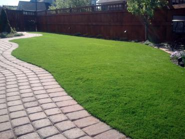 Artificial Grass Photos: Synthetic Turf Supplier Peeples Valley, Arizona Hotel For Dogs, Small Backyard Ideas