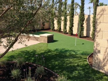 Artificial Grass Photos: Turf Grass Red Rock, Arizona Putting Green Grass, Backyard Ideas